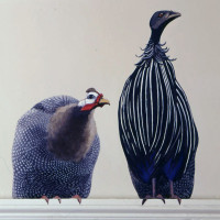 Guinea Fowl on Door