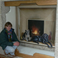 Dogs in Fireplace